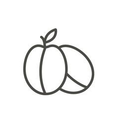 Plum icon outline fruit line plum symbol vector