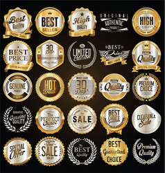 Retro vintage gold and silver badges vector