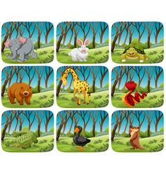 Set animals in nature scenes vector