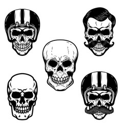 set of skulls on white background cranium in vector image