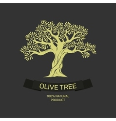 Hand-drawn graphic olive tree vector