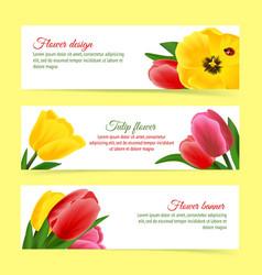 Tulip banner set vector image