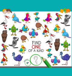 find one of a kind with birds characters vector image vector image