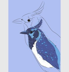blue jay vector image
