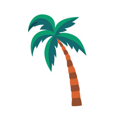 Cartoon palm tree with green leaves isolated on vector