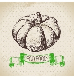 Hand drawn sketch pumpkin vegetable Eco food vector