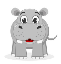 Hippo smiling on a white the character of wild vector