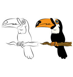 Illstration of a bird the toucan sitting on a vector