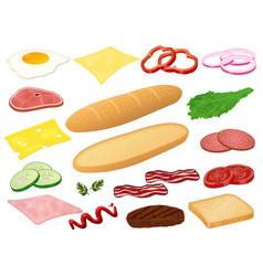 set ingredients for sandwich or burger on vector image