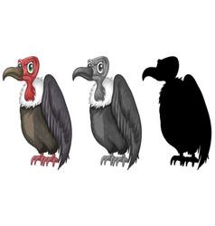 Set of vulture character design vector