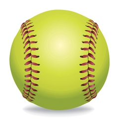 Softball isolated on white vector