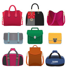 beautiful handbags for women pictures set vector image