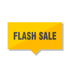 flash sale price tag vector image