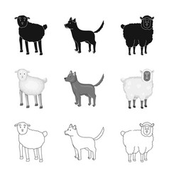 Isolated object breeding and kitchen symbol vector