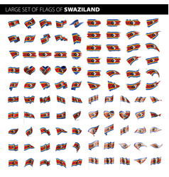swaziland flag vector image