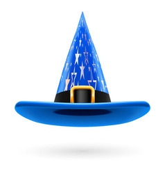 Witch hat vector image