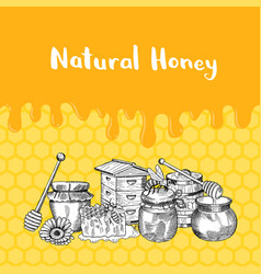 with honey elements dripping vector image