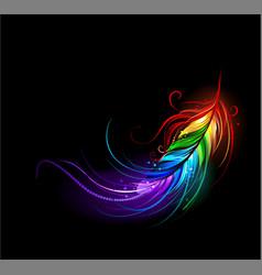 Rainbow feather vector