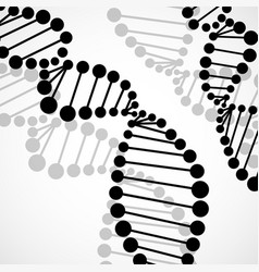 abstract spiral of dna molecular background vector image