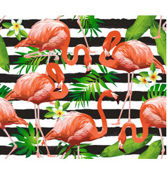 Flamingo tropical bird background seamless vector