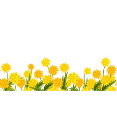long format seamless border dandelion flower vector image
