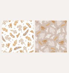 set two christmas botanical seamless patterns vector image