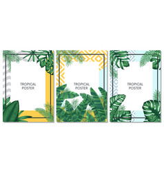 summer tropical set design for cards poster or vector image