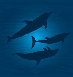 the underwater world with dolphins vector image