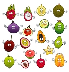Tropical fruits with smiling and happy faces vector image