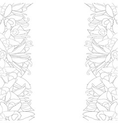 vanilla planifolia flower and vanilla pods or vector image