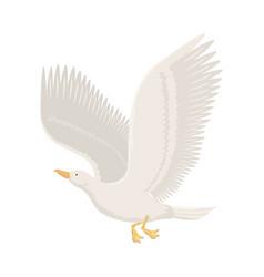 Cartoon gull flying bird vector