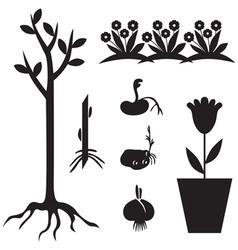 seedling set vector image vector image