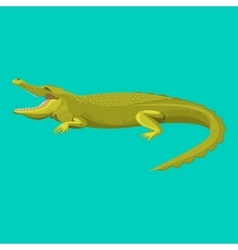 Dangerous green alligator is showing his teeth vector