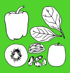Green contour vegetables set vector image