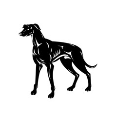Greyhound Dog Retro vector