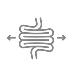 Irritable bowel syndrome line icon diseases vector