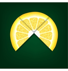 Lemons segments background vector