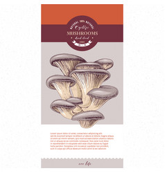 Package design for dried sliced oyster mushrooms vector