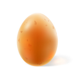 Realistic light brown whole chicken egg 3d vector