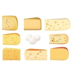 Triangular pieces of different kind of Cheese set vector image