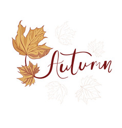 hand drawn lettering phrase autumn vector image vector image