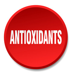 Antioxidants red round flat isolated push button vector