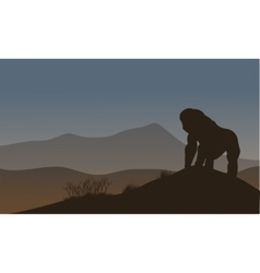 Gorilla silhouette in the hills vector image