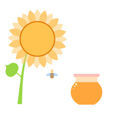 Honey in a can of bee and sunflower on a white vector