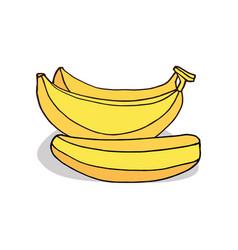 Isolate ripe banana fruit vector