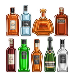 set different bottles vector image