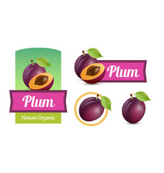 set of sticker and labels with plums isolated on vector image