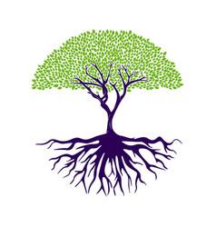 tree life logo design inspiration template vector image