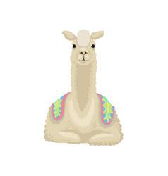 beautiful white llama alpaca animal lying vector image