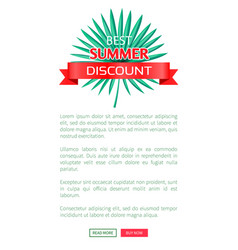 best summer discount logo with tropical palm leaf vector image